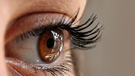 Beauty Shop - Eyelash Extensions